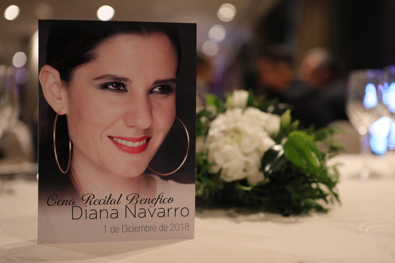 Diana Navarro Málaga Palacio
